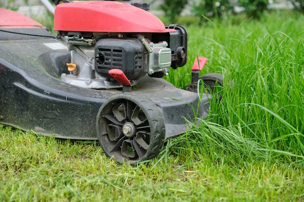 Closeup of lawn mower mowing green grass, city courtyard