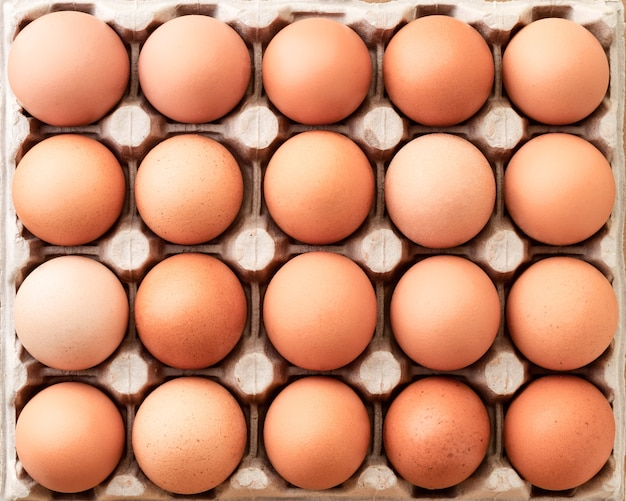 Closeup of many fresh brown eggs in carton tray. background