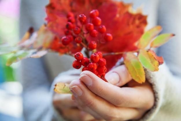 가을 꽃다발 레드 오렌지 단풍나무 잎으로 웬 무리를 들고 여자 손의 근접 촬영 자연 가을 보기...