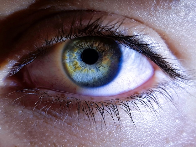 Крупный план глубоких глаз женщины человека