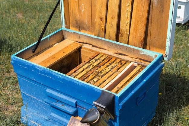 それらの上に蜂と蜂蜜のワックスハニカムとフレームのクローズアップ。