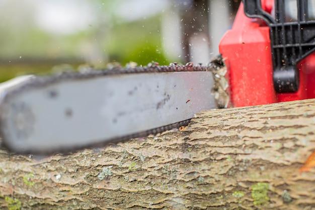 木を鋸で切っている鋸のクローズアップ。シャープなチェーン。