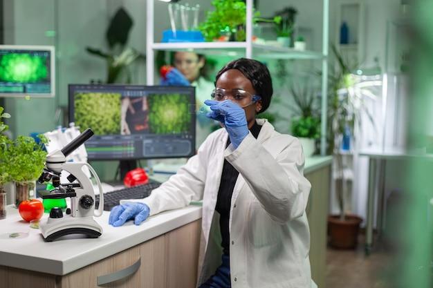 有機植物の生物学的実験のために分析している葉のテストサンプルを見ているアフリカの科学者の女性のクローズアップ。微生物学の専門家が微生物学で働いている間に有機遺伝子組み換え植物を発見する