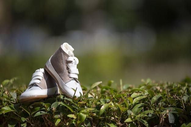 ぼやけた背景と日光の下で芝生の上のベビースニーカーのクローズアップ