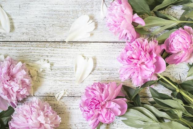 Крупный план красивых розовых цветов пиона с лепестками на белом деревянном столе. плоская планировка.