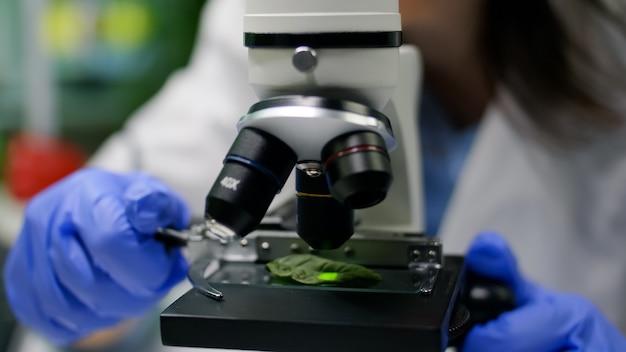 유전자 돌연변이를 분석하는 현미경으로 잎 샘플을 넣어 생물 학자 손의 근접 촬영