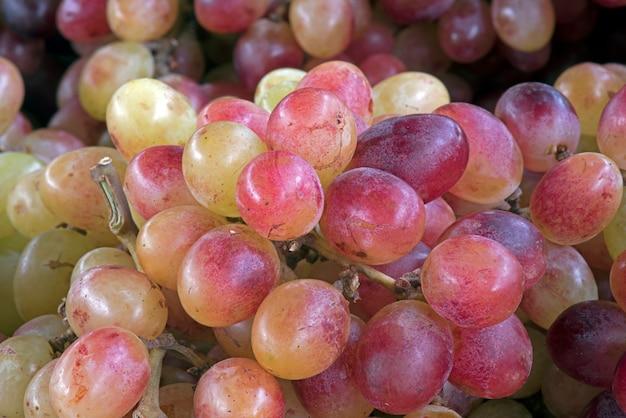 Крупным планом гроздья винограда