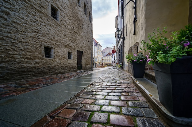 雨が降った後の古い建物の石畳の通りのクローズアップ。