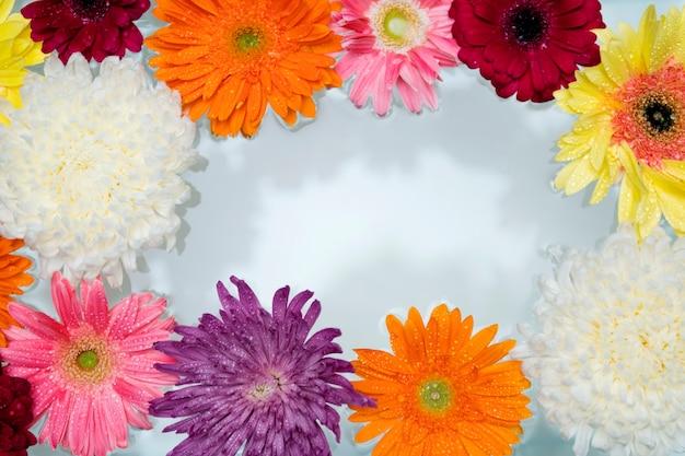水に浮かぶ色とりどりの花のクローズアップ