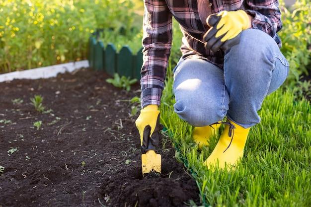 暖かい晴れた日の春に庭のベッドに植物を植える女性の庭師のクローズアップ