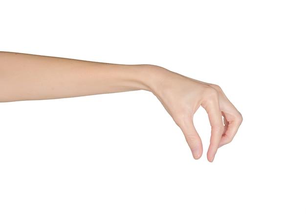 白で隔離される女性の手のクローズアップ。