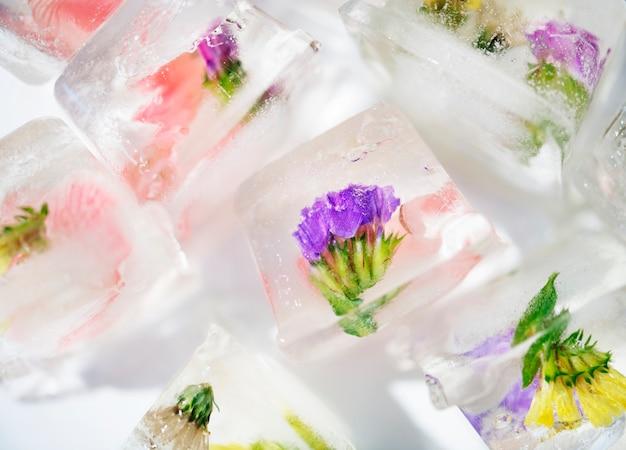 꽃 아이스 큐브의 근접 촬영