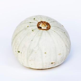Closeup of fresh white pumpkin on white background