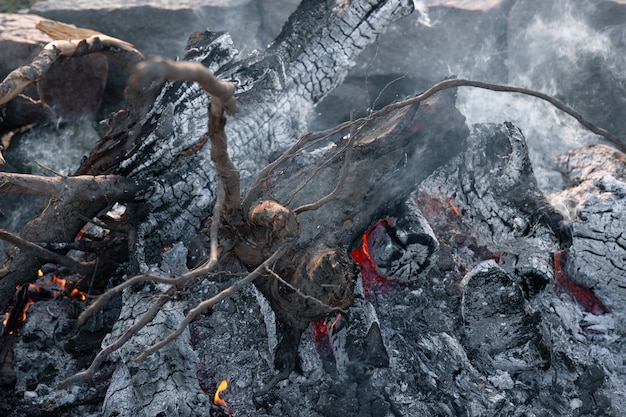 瀕死の火の中の木の大きな丸太のクローズアップ