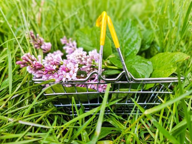 緑の芝生の上の金属製のスーパーマーケットのバスケットにライラックの花のクローズアップ。