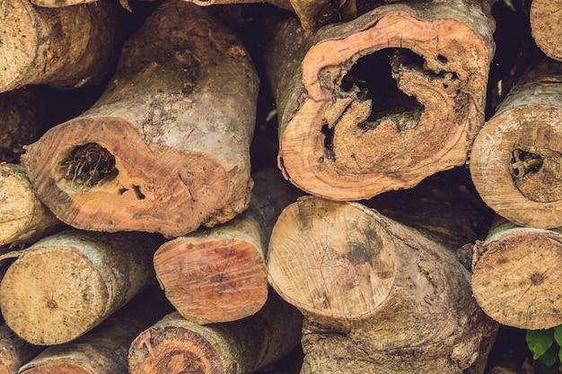 自然の中の木の丸太のクローズアップ