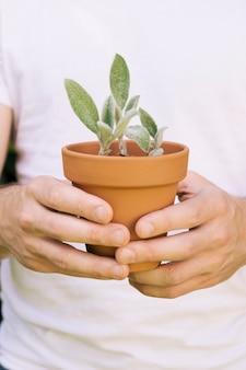 緑の植物を持つ男のクローズアップ