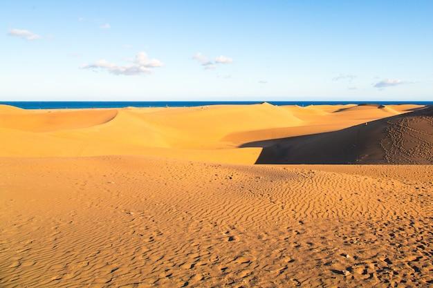 グラン カナリア島のマスパロマス砂丘のクローズ アップ