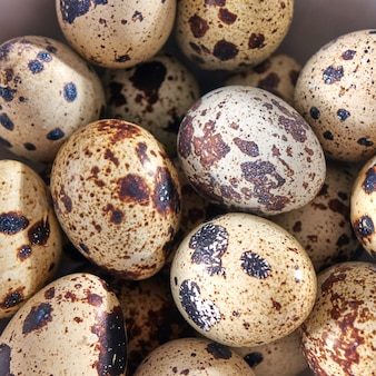 그릇에 유기 메 추 라 기 계란의 근접 촬영입니다. 샐러드 재료로 건강한 제품. 평면도