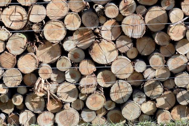 Крупным планом кучу стволов деревьев в лесопилке, в вид спереди