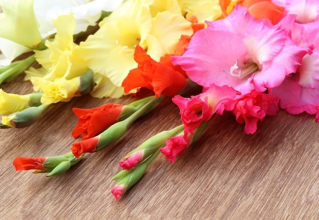 선택적 포커스가 있는 분홍색 주황색 노란색 글라디올러스 꽃의 근접 촬영