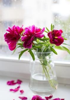 窓に対してガラスの花瓶のピンクの牡丹のクローズアップ。花屋のコンセプト。美しいフレッシュカットブーケ。花の配達