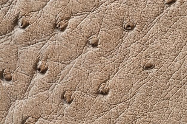 背景のシームレスなベージュの革のテクスチャのクローズアップ