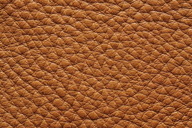 배경 원활한 베이지 색 가죽 질감의 근접 촬영