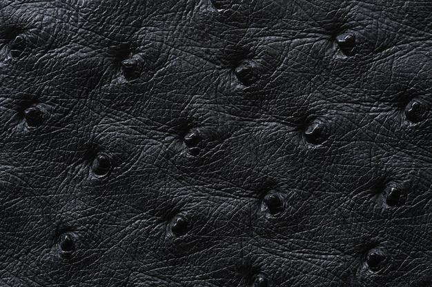 배경 원활한 검은 가죽 질감의 근접 촬영