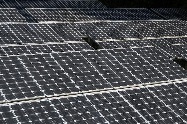 Крупный план панели солнечных батарей. большие солнечные батареи в тропическом лесу. альтернативная солнечная энергия.