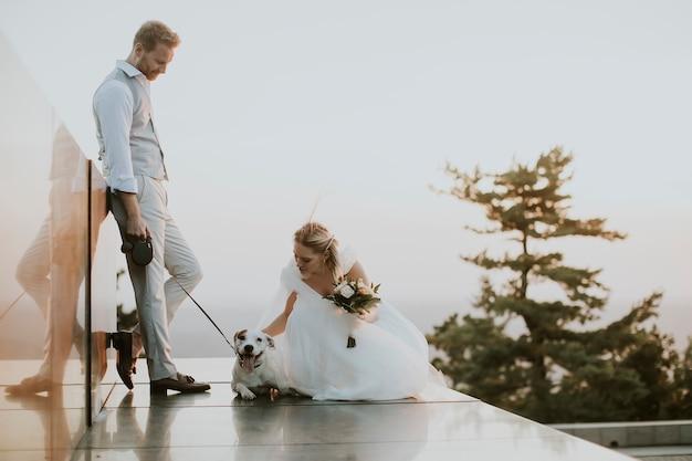 Крупным планом симпатичная молодая пара молодоженов с собакой джек рассел терьер