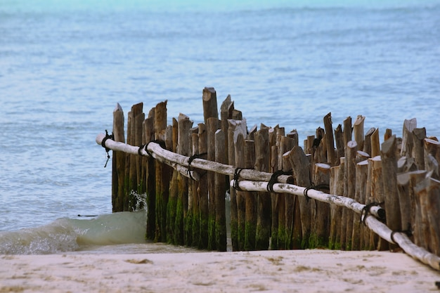 바다로 둘러싸인 해변에서 미완성 부두의 수직 나무 널빤지의 근접 촬영