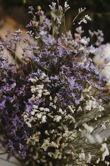 흰색과 보라색 caspia 꽃의 근접 촬영