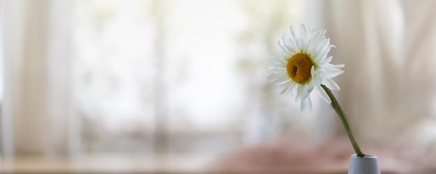 Крупным планом белая ромашка с желтым цветком пыльцы в вазе с копией пространства