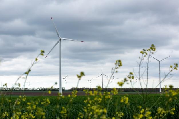 ぼやけた白い風車と野生の黄色い花のクローズアップ