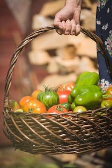 Крупным планом женская рука держит корзину со свежими органическими овощами, помидорами и перцем