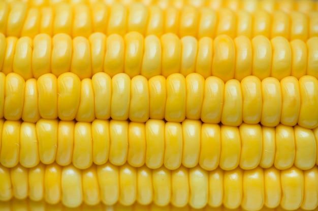 Макрофотография желтый кукурузы текстурированный фон