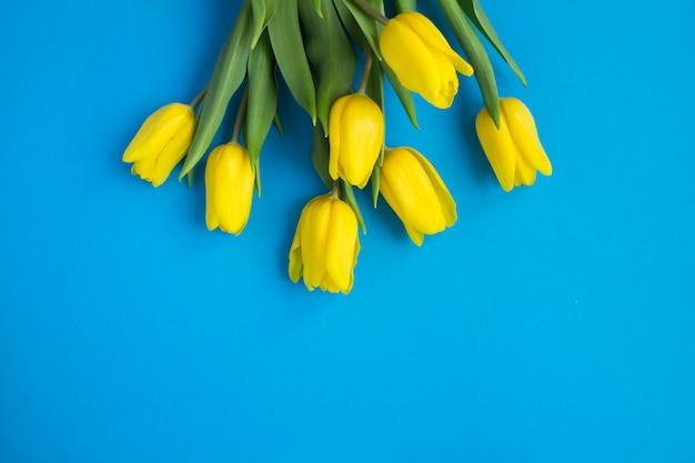 青い背景に黄色いチューリップのクローズアップ