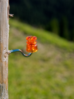 Closeup of a orange electric fence insulator screwed on a wooden post.