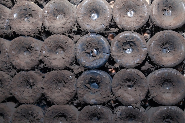 Closeup pattern from bottom of old dark dusty wine bottles in rows in cellar of wine warehouse. concept vault with old rare wines, exclusive collection rare bottle