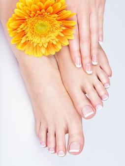 Foto del primo piano di una femmina di piedi al salone della stazione termale sulla procedura di manicure e pedicure - immagine soft focus