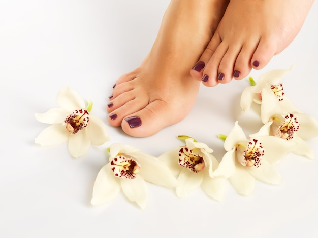 Closeup photo of a female feet with beautiful pedicure after spa procedure on white
