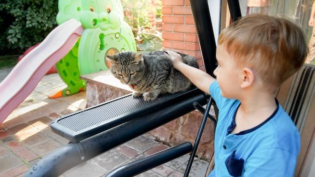 家の裏庭で灰色の猫を愛撫する愛らしい3歳の幼児の男の子のクローズアップ写真
