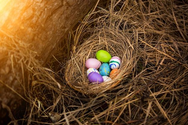 숲에 둥지에 누워 다채로운 부활절 달걀의 근접 촬영 사진