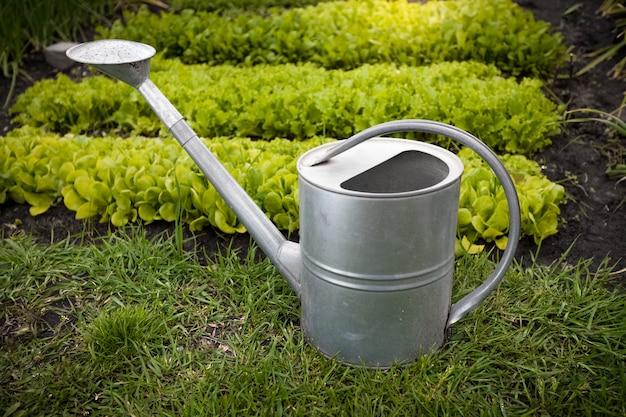 화창한 날에 정원 침대에 아연 도금 물을 수의 근접 촬영 사진