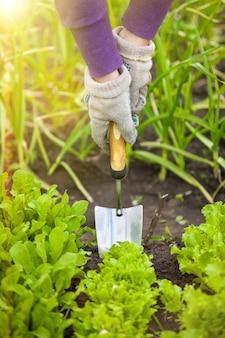 화창한 날에 정원에서 손 삽으로 파고 여자의 근접 촬영 사진