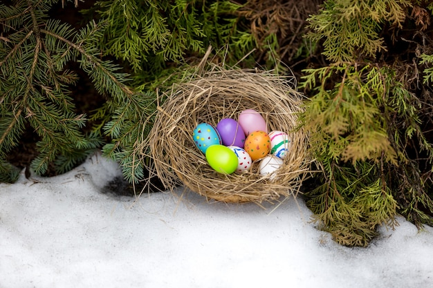 Closeup photo of painted easter eggs hidden in nest at backyard
