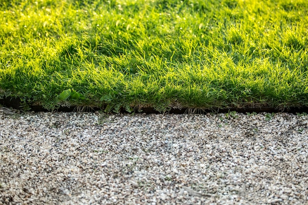 Closeup photo of stone path and fresh green grass at sunny day