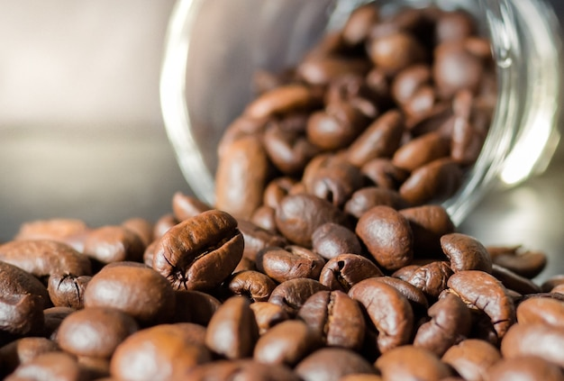 Closeup picture, coffee beans with glass bottle and sunlight
