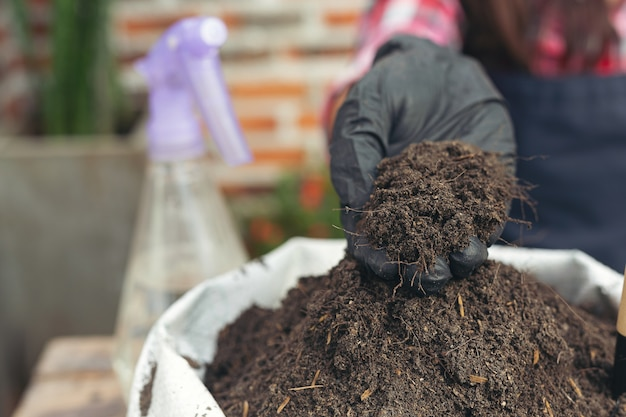 Maschera del primo piano delle mani del giardiniere che pianta pianta